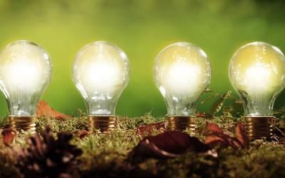 Die weite Landschaft der Ökostrom-Siegel | Strom | Ökostrom | Qualität | Cheapenergy24