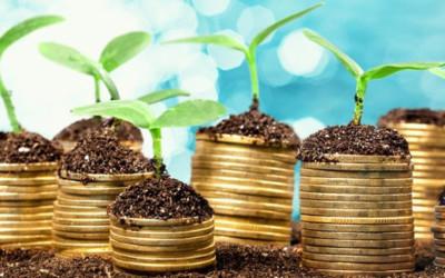 Gestapelte Geldmünzen mit kleinen Pflänzchen auf der Spitze.