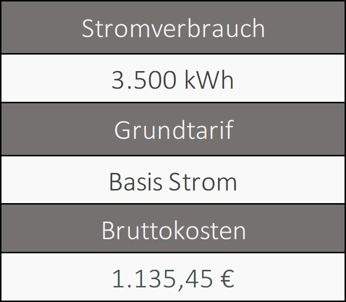 Informationen über den Grundversorger von Karlsruhe