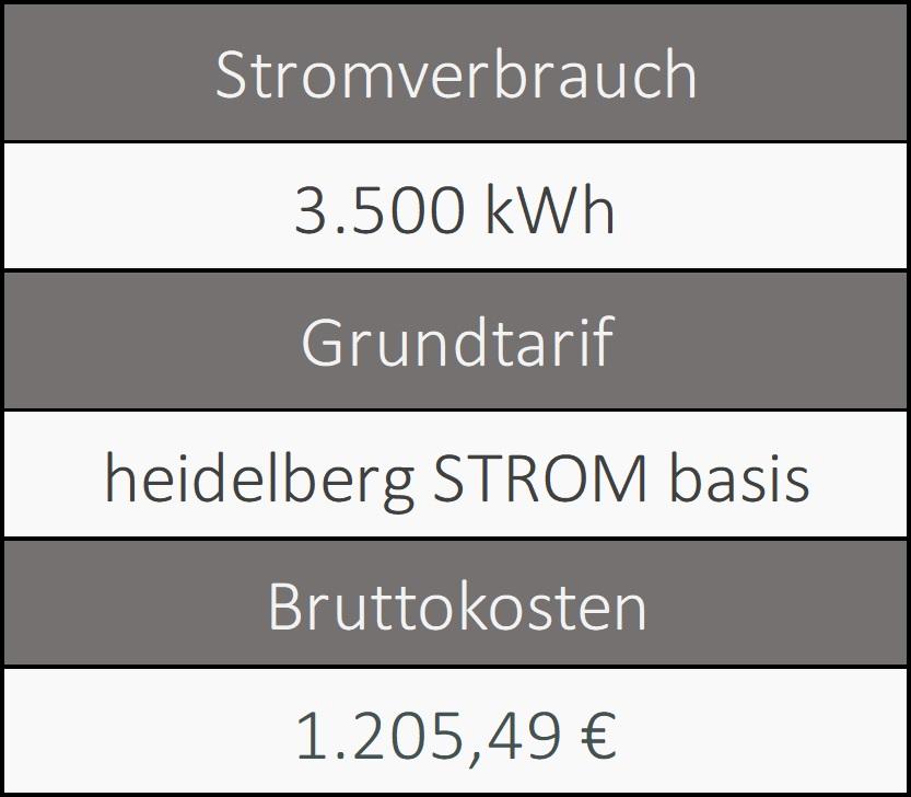 Informationen über den Grundversorger von Heidelberg